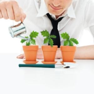 Картинка к статье про то, как начать инвестировать с нуля, Игорь Васильев